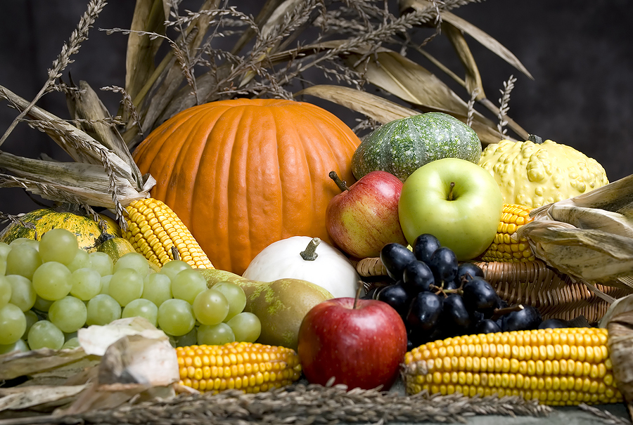 bigstock_autumn_fruit__910040