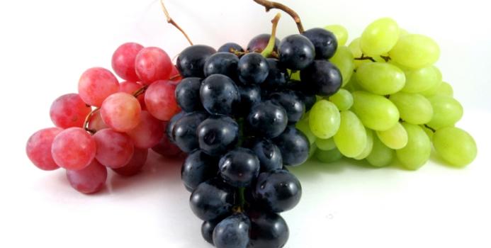 grape_000003495719_small-108732
